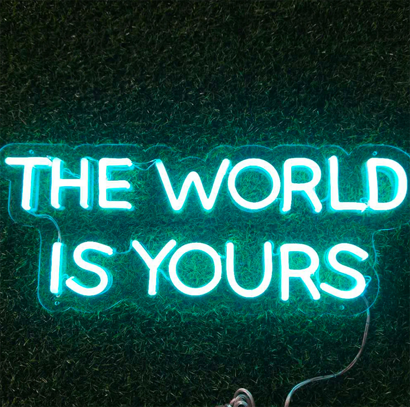 the world is yours LED Neon Sign